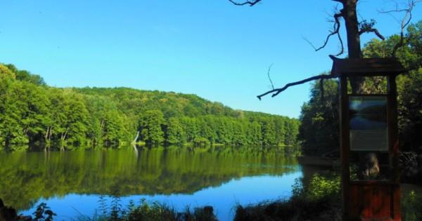 Поездка на Шелеховское озеро через Визировку
