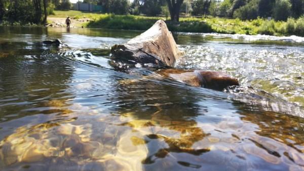 Выходные на прекрасной природе реки Любка