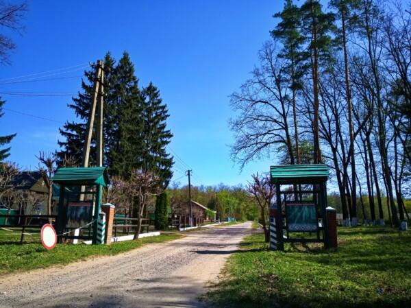 Лесными околицами Сум